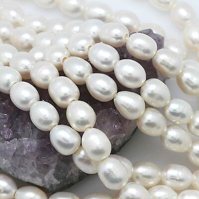 Cultured Fresh Water Pearl Beads Rice White Large Hole 10x12mm/2mm Hole AAA 15.5