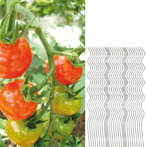 30x Tomatenspiralstab 110cm voll verzinkt Tomatenstab Tomaten Ranke Pflanzstab