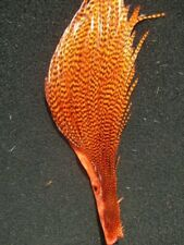 metz cape cock neck grizzle predator streamer buggar salmon lure quarter