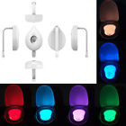 LED Toilet Night Light Human Motion Activated Seat Sensor Lamp 8 Colors Safety