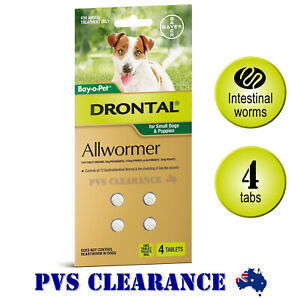 Details about Drontal Allwormer for Small Dogs Up To 3kg - 4 Tablets -  Puppy Worms Tapeworm