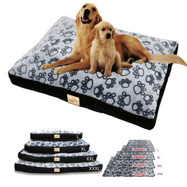 Xl Dog Bed Pet Cot Cool Elevated Indoor Outdoor Mat Pad Large Jumbo Big Kennel For Sale Online Ebay