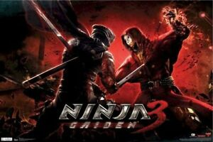 Ninja Gaiden 3 Poster Ryu Sword Fight 22x34 Video Game Hayabusa
