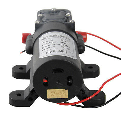 Miniature 12V Water Pump 3L/Min Self-Priming Caravan Camping Boat Car Wash