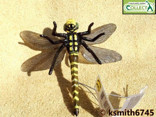 NOUVEAU * CollectA Dragonfly solide Jouet en plastique Wild Zoo Animal Insecte Bug
