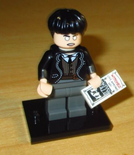 Credence Barebone ™ nr 21 Lego 71022 Harry Potter™ /& Phantastische Tierwesen™