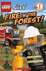 Fire in the Forest! by Samantha Brooke (Hardback, 2012)