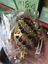 Crystal Faberge Easter Egg Russian Retro Imperial Royal Trinket Jewellery Box