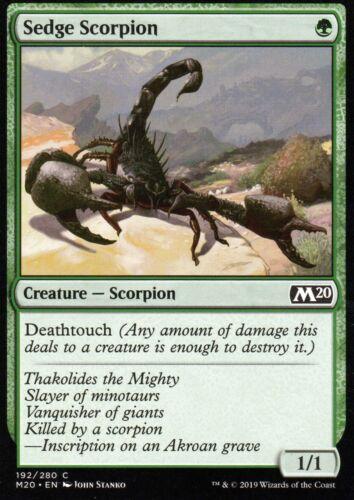 4x Sedge ScorpionNM//Mm20 Core Set Magic 2020Magic MTG