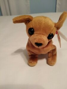 0cc0133b810 Image is loading Ty-Beanie-Babies-Tiny-Chihuahua-Dog-September-8-