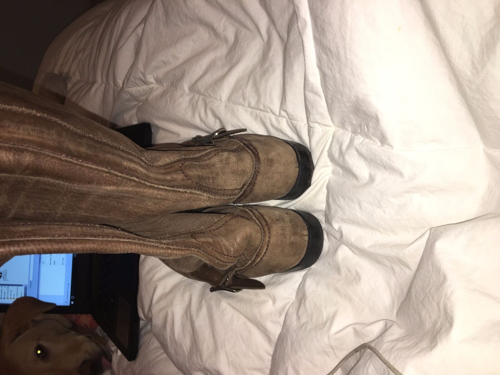 Frye- Veronica Slouch' Women boot size 8 1 2 brown brown brown leather 477c9f