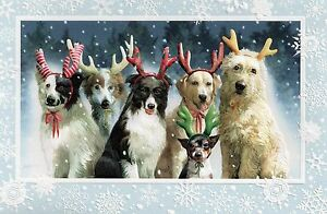 Details about 16 Christmas Cards Border Collie Labrador Retriever Golden  Doodle Rat Terrier