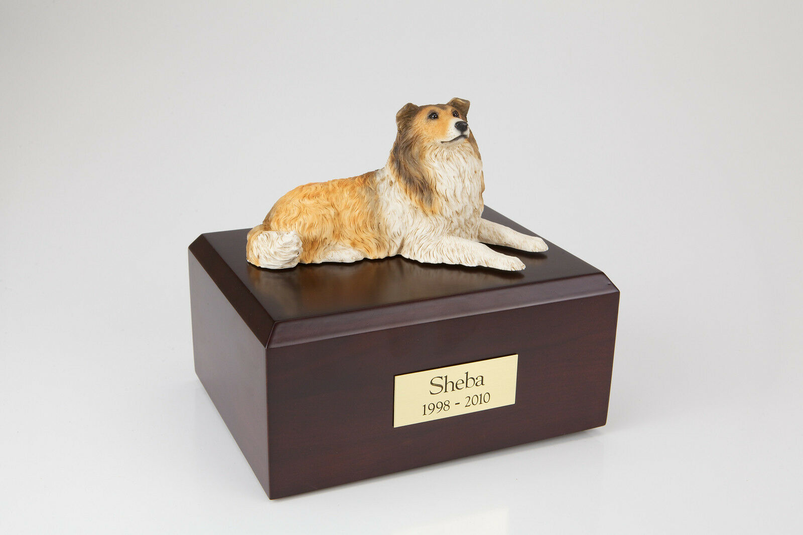 Collie Pet Funeral Cremation Urn Available in 3 Different Colors & 4 Sizes