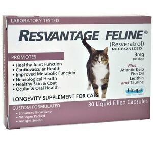 Resvantage-Feline-Resveratrol-The-Longevity-Supplement-for-Cats-30-Capsule