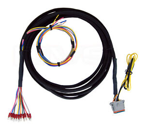 Details about AVS WIRING HARNESS 15' - ACCUAIR VU4 VALVE TO ARC 7 SWITCHBOX on