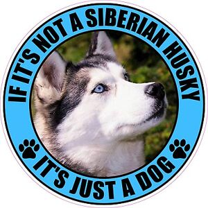 If It S Not A Siberian Husky It S Just A Dog 4 Sticker Ebay