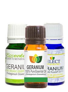Geranium-Pure-Essential-Oil-Natural-Perlargonium-Graveolens-Aromatherapy