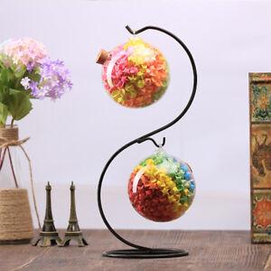 Iron Hanging Plant Stand S Shape Flower Holder For Landscape Garden