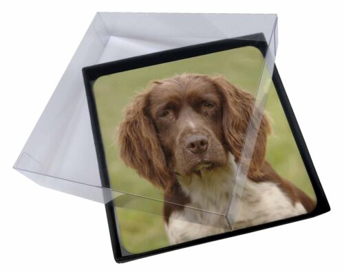 4x Liver Springer Spaniel Dog Picture Table Coasters Set in Gift Box, ADSS6C