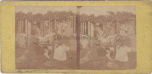 Un Lente A Giardino Scena Da Genere Foto Stereo Vintage Albumina Ca 1870
