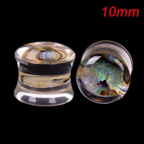 Ear PlugsTunnels Shell geschraubte Ohrringe Expander Ear Gauges Schmuck Pier CL