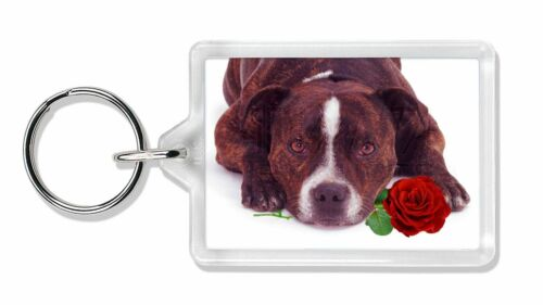 Brindle Staffie with Rose Photo Keyring Animal Gift, AD-SBT2RK