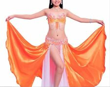 D &DD CUP C801 Belly Dance Costume Outfit Set Bra Belt Carnival Bollywood 2 PCS