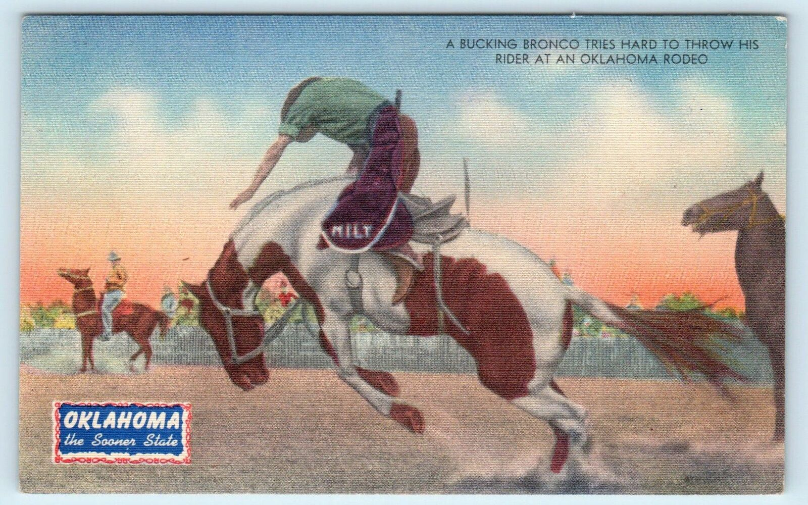 Rodeo Rider In Oklahoma The Sooner State Promotional Linen C1940s Postcard Ebay