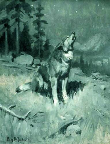 Howling Wolf at Night by Phillip Goodwin