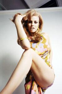 Raquel-Welch-photo-leggy-vampish-pose-11x17-Mini-Poster