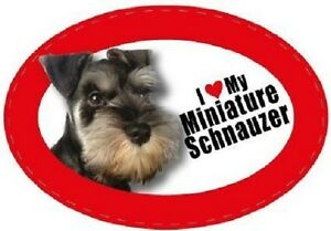 miniature schnauzer magnet gifts for dog owners kitchen fridges