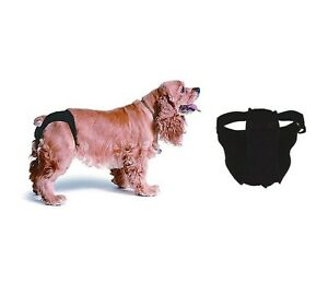 CLASSIC-Sanitary-Pants-for-Dogs-female-dogs-in-heat-or-older-dogs-amp-Cats