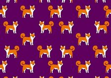 A3 Wild Animals Poster Gift #8323 Adorable Ginger Fox Poster Print Size A4