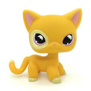 Littlest Pet Shop Rare Yellow Orange Shorthair Cat Purple Moon Eyes