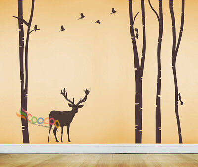 Wall Decor Decal Sticker vinyl large birch tree forest DC338