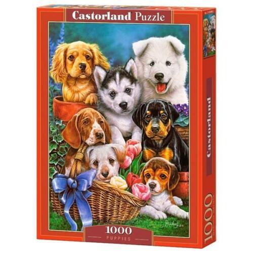 Puppies 1000 pièces Puzzle Castorland 104048