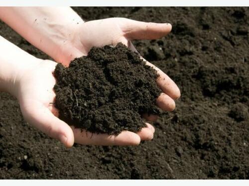 Organic Cow Manure compost manure fertilizer 100/% organic for plant growth