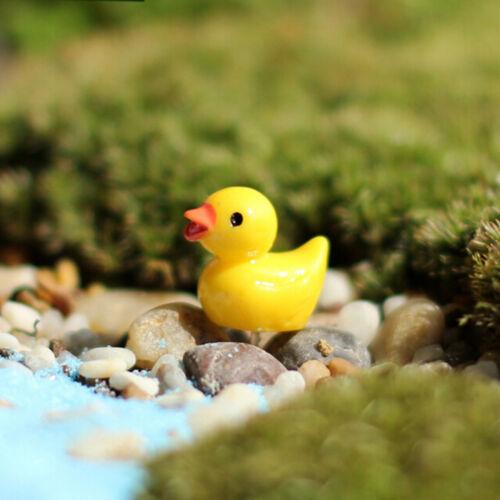 10x Miniatur Harz Gelbe Enten Puppenhaus Handwerk Fee Garten Bonsai Decor//4H