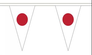 12 Flags Australia 5M Triangle Flag Bunting Triangular