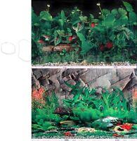 Tropical Planted Black/rock Crevice Wall 2 Scene 24h Aquarium Background