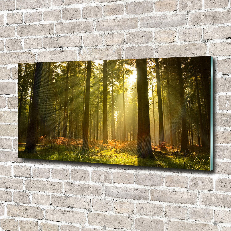 Acrylglas-Bild Wandbilder Druck 140x70 Deko Landschaften Wald Sonne