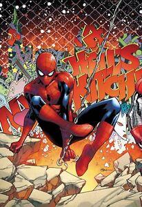 TYPHOID FEVER SPIDER-MAN #1 REG  REL DATE 10//03//2018