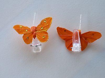 4 Papillons Avec Strass Orange Sur Pince à Linge. Décoration De Mariage Om Gezondheid Effectief Te Stimuleren