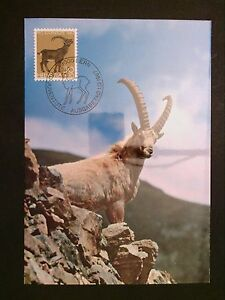 Charitable Suisse Mk 1967 868 Animaux Steinbock Maximum Carte Carte Maximum Card Mc Cm C8349-afficher Le Titre D'origine