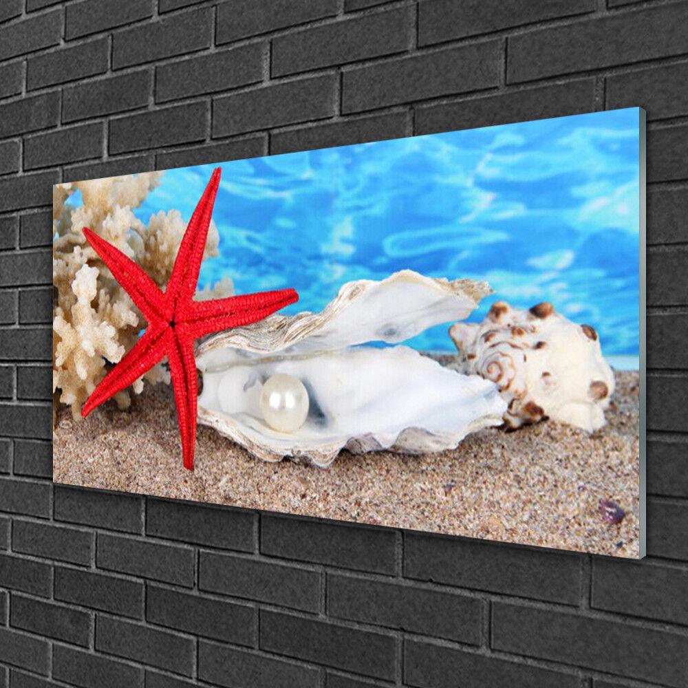 Image sur verre Tableau Impression 100x50 Nature Étoile De Mer Coquilles