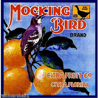 Eustis Florida Black Bird Orange Citrus Fruit Crate Label Art Print