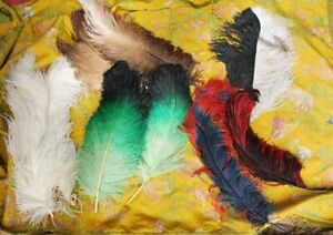 1900-ANTIQUE-LOT-OMBRE-COLORFUL-OSTRICH-FEATHER-FOR-FANCY-TRIMMINGS-9-PLUMES