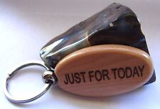 Narcotics Anonymous NA NEW WOOD Just For Today Keychain Keyring Token chip