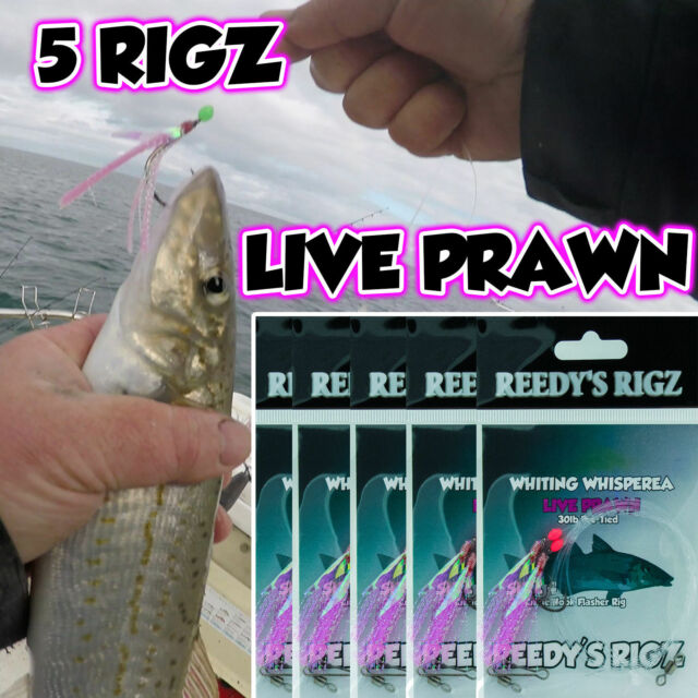 5 Whiting Rigs Fishing Rig Bait Bream Salmon Flathead Size #4 Hook Pre Tied