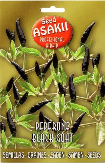 """Semi/Seeds PEPERONE """" Black Goat """""""